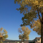 Fall in The Meadows | The Meadows Castle Rock CO