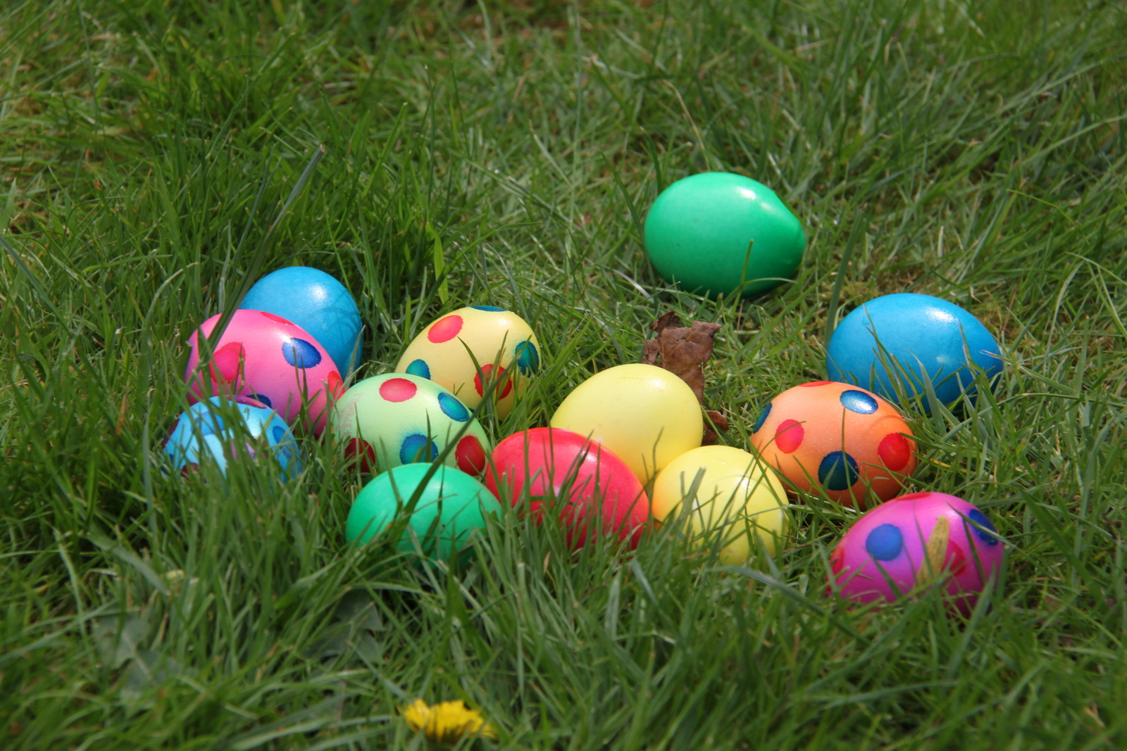 Eggstravaganza 2016 in Butterfield Park at The Meadows
