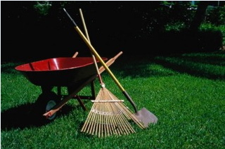 Landscaping Tips To Get Your Yard Summer Ready