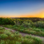 Ridgeline Open Space Castle Rock CO | The Meadows Castle Rock CO