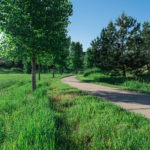 Castle Rock Trails in Castle Rock CO | The Meadows Castle Rock CO