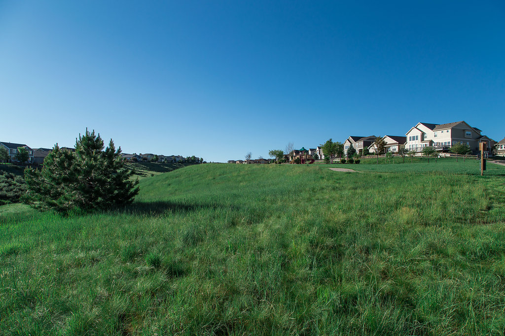 The Meadows Master Planned Community in Castle Rock CO