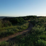 Ridgeline Open Space | The Meadows Castle Rock CO