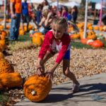 PumpkinFest at The Grange | The Meadows Castle Rock CO