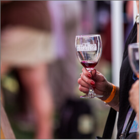 Winefest2016-49